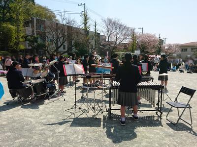 桜祭り③.jpgのサムネール画像