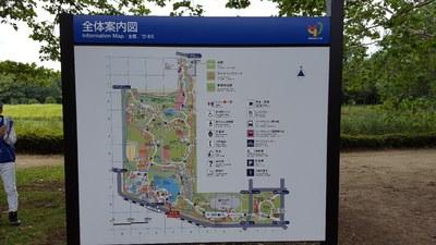 板橋歩こう会③.jpgのサムネール画像