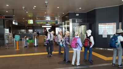 板橋歩こう会⑪.jpg